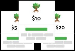 choose your mangrove trees planting plan